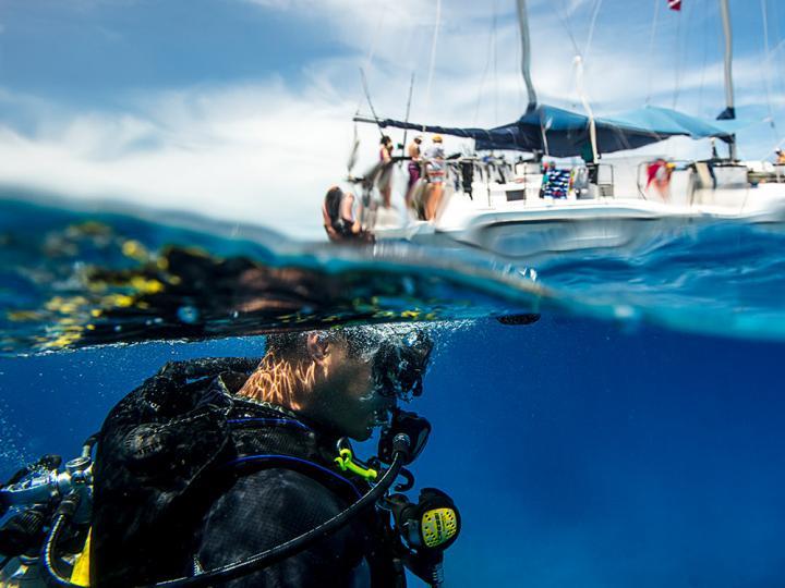 Plongeur dans l'eau